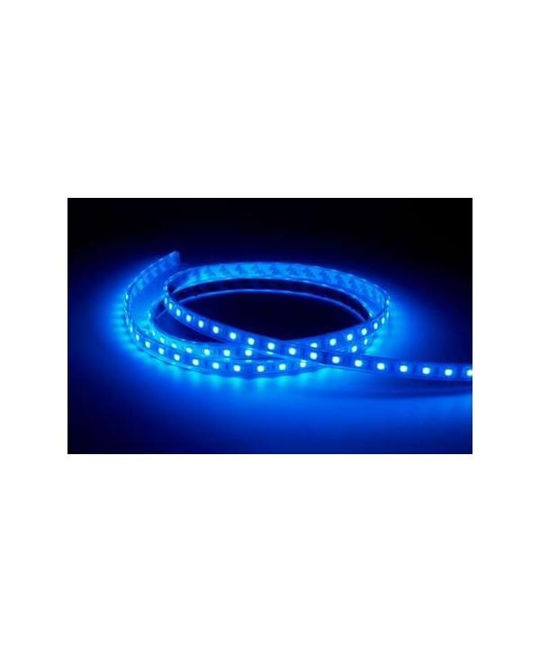 Ruban Leds COLORTAPE6067 CONTEST RGB 60 Leds 24V 5M IP67